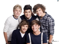 one-direction-24v
